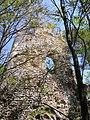 Hrad Blatnica - panoramio.jpg