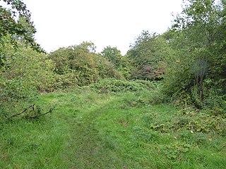 Humberstone Park LNR