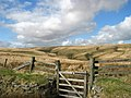 Hunting Gate, Trout Hill - geograph.org.uk - 728550.jpg