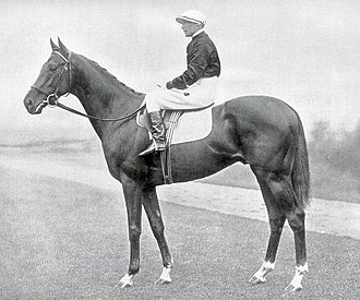 Hyperion (horse) - Image: Hyperion (1930 1960)
