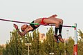 IAAF World Challenge - Meeting Madrid 2017 - 170714 211246.jpg