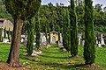 I cipressi del cimitero inglese.jpg