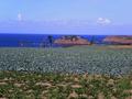 Ile Du Guesclin vue des terres à Saint-Coulomb.png