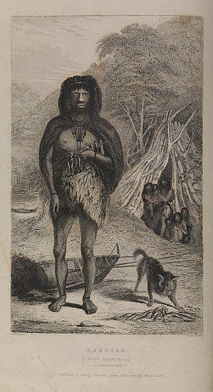 Fuegian dog - Image: Illustration of a Fuegian, Yapoo Tekenika Wellcome L0076886