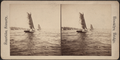 Instantaneous view on East River, from Robert N. Dennis collection of stereoscopic views.png