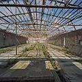 Interieur, overzicht staalconstructie dak van de hal, polonceauspanten - Midwolda - 20378639 - RCE.jpg