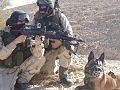 Israeli-Police-Facebook--Special-Forces-001.jpg