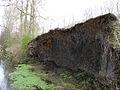 It looks like a wall - geograph.org.uk - 752765.jpg