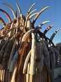 Ivory tusk tower (10855198063).jpg
