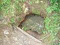 Izvorul de apă minerală de la Călămari - panoramio.jpg