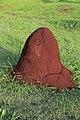 J37 815 Termitenhügel.jpg