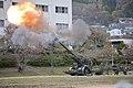 JGSDF Western Army Field Artillery Regiment.jpg