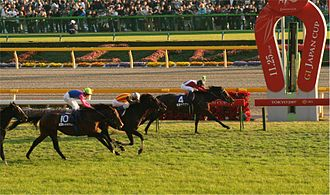 Japan Cup - Image: Japan Cup 20071125R1