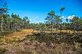 Jersikas pagasts, Latvia - panoramio (12).jpg