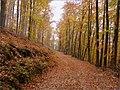 Jeseň - Autumn - panoramio.jpg