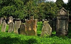 Jewish cemetery Szydlowiec IMGP7624.jpg