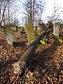 Jewish cemetery in Szydlowiec Poland 9.JPG