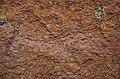 Křovácké malby, Bushman paintings (giraffe) - Namibie - panoramio.jpg