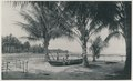 KITLV - 12604 - Kleingrothe, C.J. - Medan - The beach at Rantau Panjang in Deli - 1903.tif