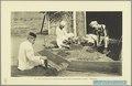 KITLV - 37413 - Demmeni, J. - Tulp, De - Haarlem - Cutting and laying out of tobacco at Payakumbuh, Sumatra - 1911.tif