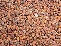 Kakaobohnen.JPG