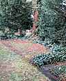 Kalischer Gräber Ffm Südfriedhof.jpg