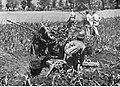 Kanonierzy niemieckiej artylerii przeciwlotniczej na froncie włoskim (2-2350).jpg