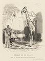 Karl Girardet, L'étable de la girafe dans la grande rotonde de l'éléphant, 1842.jpg