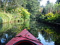 Kayaking in Spreewald 2012 (14).jpg