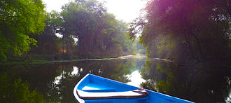Keoladeo National Park - A view of Keoladeo National Park wetland from a boat