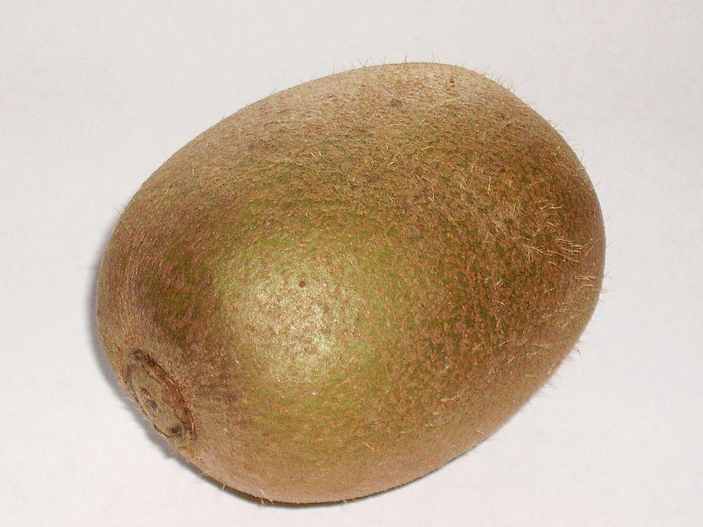 File:Kiwi (one fruit).jpg - Wikimedia Commons