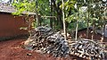 Konkan - Songiri Village - Ratnagiri District - Part 1 20151218 (23701648560).jpg
