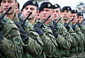 Kosovo Security Force Marching.jpg