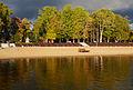 Kreutzwaldi park 2013.jpg