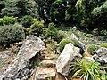 Kunming Botanical Garden - DSC03033.JPG