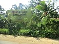 Kurunegala, Sri Lanka - panoramio (12).jpg