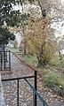 L'automne.jpg
