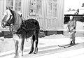 Løytnant Fuglår med hest i Vadsø (1940) (4733730036).jpg