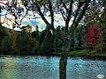 Lago Castiñeiras01 (4123504591).jpg