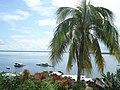 Lago tefé - panoramio.jpg