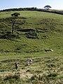 Landcombe - geograph.org.uk - 535720.jpg