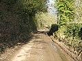 Lane To Lower Upton - geograph.org.uk - 1701737.jpg