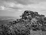 Larrun - Roca 01.jpg