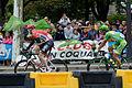 Le Tour de France 2015 Stage 21 (20180584045).jpg