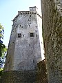 Le donjon - panoramio - chisloup (1).jpg