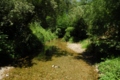 Le ruisseau Caussels.png