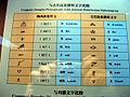 Lijiang Oct 2007 207.jpg
