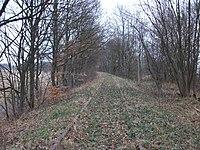 Limbach Bahndamm Richtung Hartmannsdorf.JPG