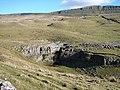 Limestone outcrop near Horton Scar - geograph.org.uk - 497845.jpg
