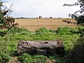 Lincolnshire Wolds Farmland - geograph.org.uk - 554698.jpg